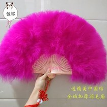 Fan de danse noire et blanche hollow Dance feather Summer thickening Kongming classical square dance fan girl