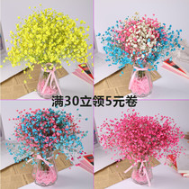 Forget-me-not-dried flower bouquet home furnishings small fresh net red dried flower bouquet with vase