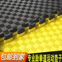 Taekwondo mats sports mats gym Sanda martial arts mats non-slip professional training foam mats