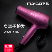 Feike hair dryer home barber shop dedicated high-power negative ion hair care does not hurt the hair salon mute hair dryer