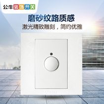 Bull socket decorative Switch delay switch with centralized control light touch delay Type 86 switch G01 texture white