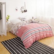 Simple modern style cotton AB version quilt single double cotton bedding