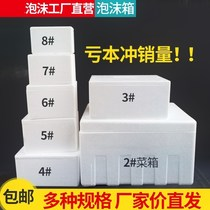 Trumpet No. 8th Foam box medium Cooling white vegetable incubator Large capacity density box small