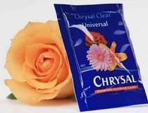 Preservative imports of Holland fresh flowers preservative Lily Rose carnation universal