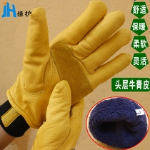 Good protection of the whole leather cow skin Frost cold cold cold storage thickening plus cashmere durable non-slip gloves
