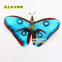 New butterfly kite silk hand-painted mini butterfly multi-color decorative exhibition with a variety of optional three-dimensional