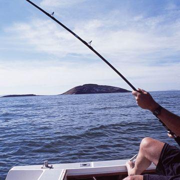 路亚钓鱼助你竿竿连上,大师都感到惊异